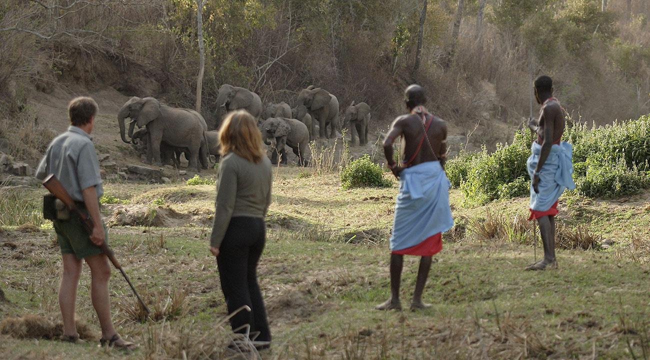 The beauty of a Kenya walking safari