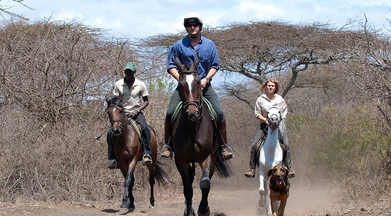 Why You Should Go On A Horseback Safari