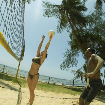 African Beach Safari