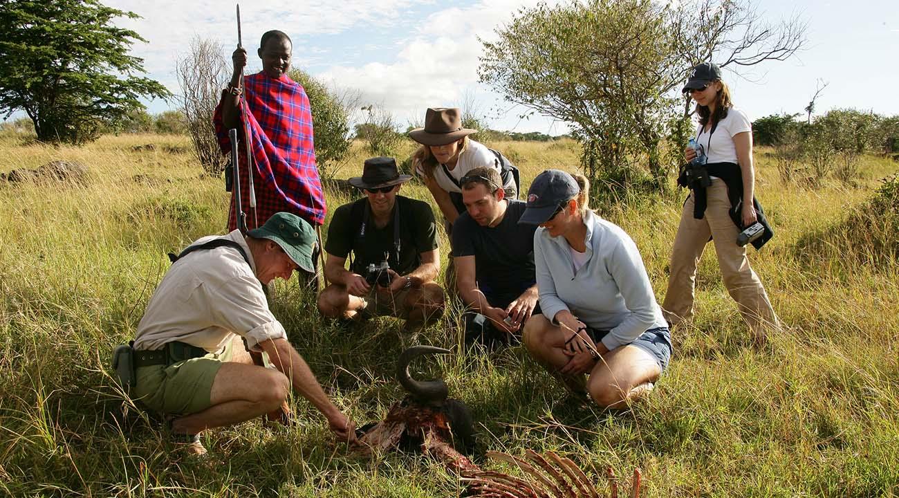 African Group Safari Experiences